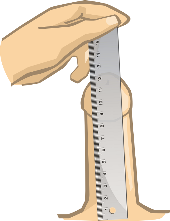 Size calculater penis Calculate how